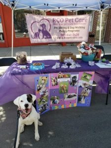 Naugatuck Spring Festival - Rocco at RCO Pet Care booth