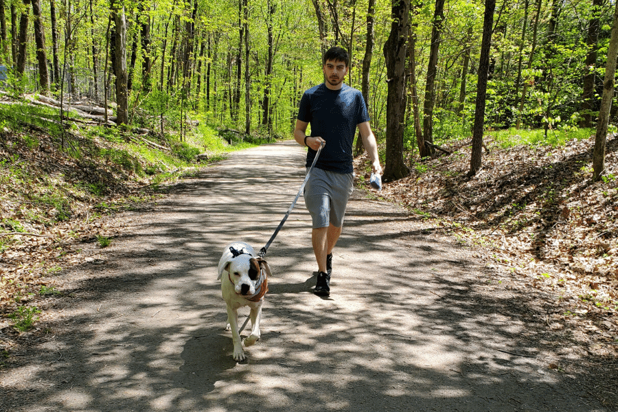 Best Places to Walk Your Dog Oxford CT Larkin Bridle Trail