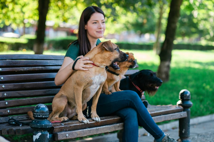 How We Hire the Best Dog Walkers and Pet Sitters