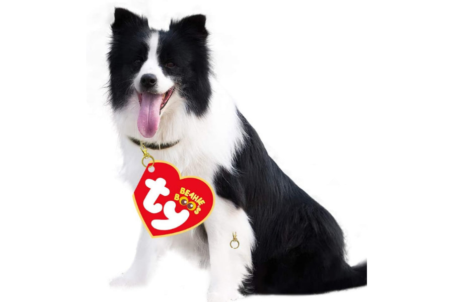 RCO Pet Care Halloween Costumes For Your Pet Dog Wearing Beanie Baby Tag