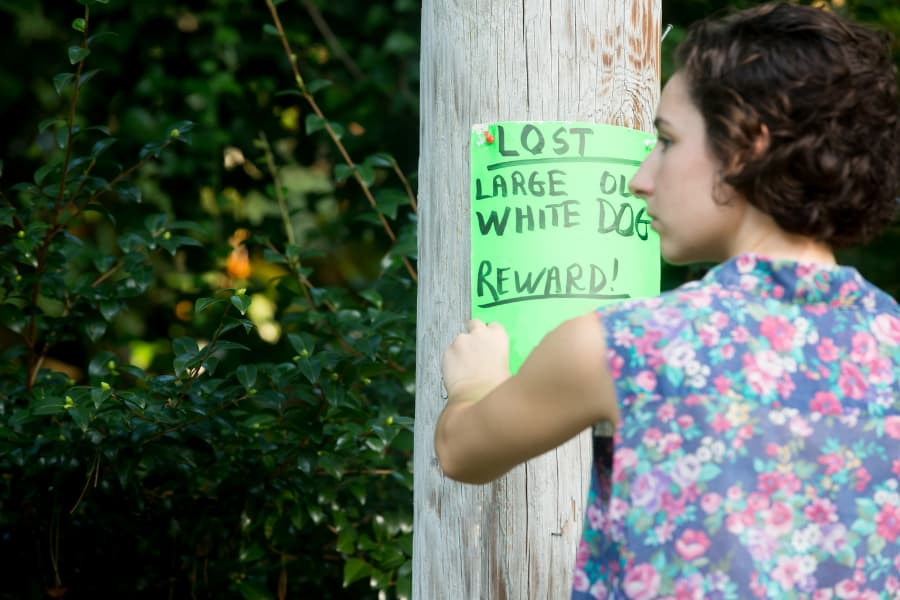 Woman hanging lost dog poster