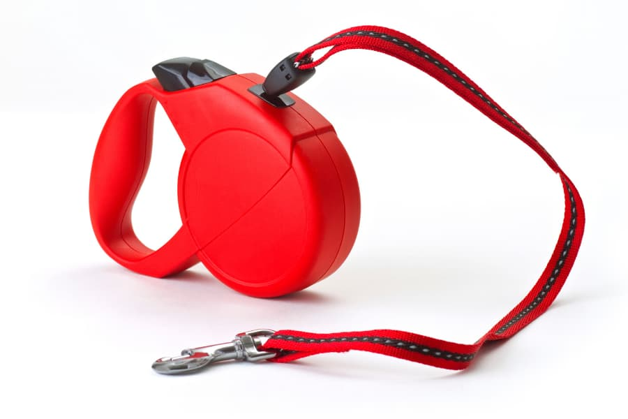 Red retractable dog leash