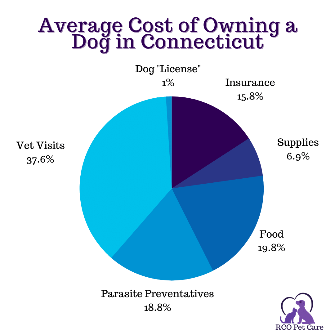 Pie chart breaking down annual costs of basic dog ownership