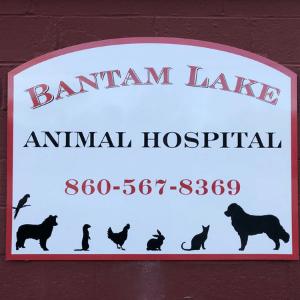 Bantam Lake Animal Hospital and Thomaston Veterinary Clinic